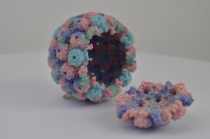 Rita Allen Foundation Scholar Luis Villarreal has studied how viruses such as polyomaviruses establish and maintain persistent relationships with their mammalian hosts. Shown here is a 3-D printed model of a polyomavirus capsid. (Image: Flickr, NIH/NIAID)