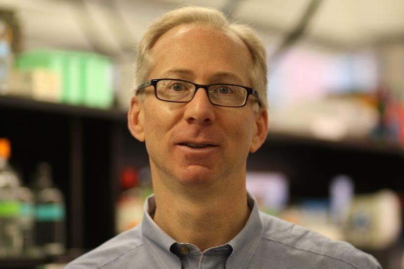 Jeffrey Macklis